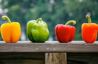 Top 5 Health Benefits of Bell Peppers!