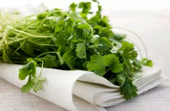 Top 5 Health Benefits of Coriander!