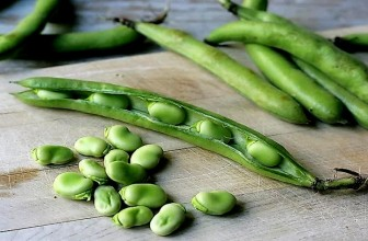 Top 5 Health Benefits of Fava Beans!