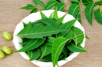Top 5 Health Benefits of Neem!