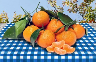 Top 5 Health Benefits of Satsumas!