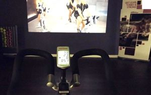 Wellbeats customise your own gym workout