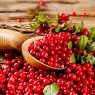 Top 5 Health Benefits of Cranberries!