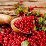 Top 5 Health Benefits of Cranberries!