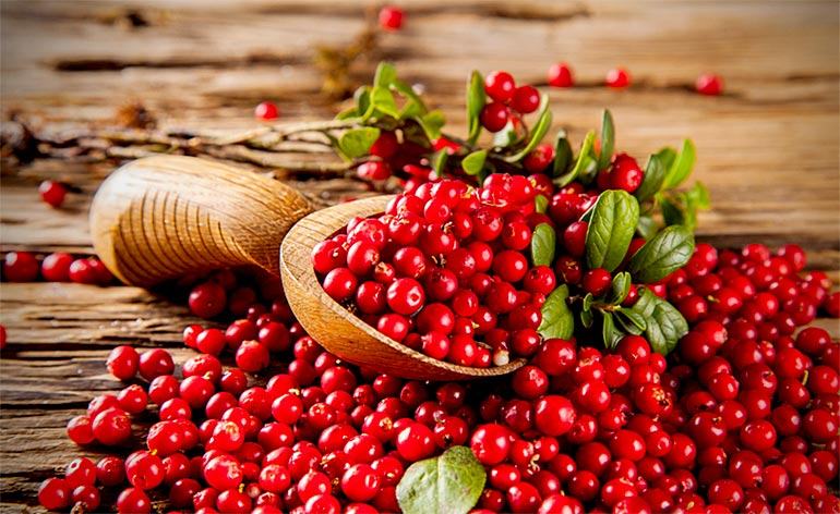 Top 5 Health Benefits of Cranberries! - Keep Fit Kingdom