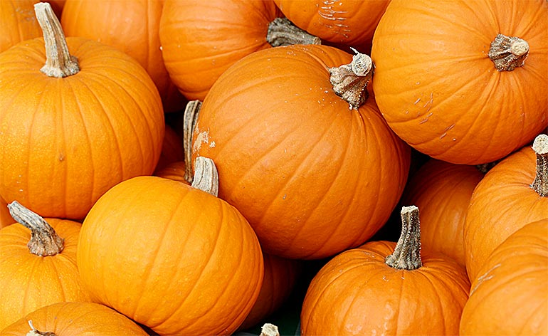 Top 5 Health Benefits of Pumpkin! -Keep Fit Kingdom