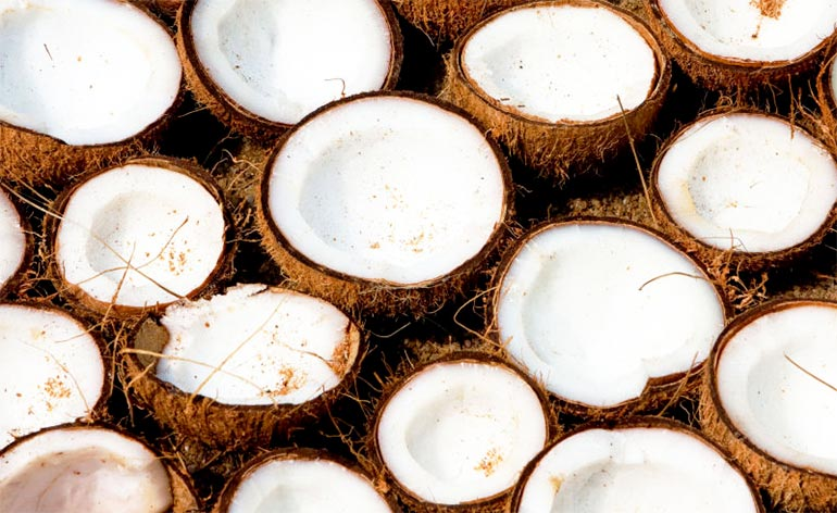 Top 5 Benefits Of Cooking With Coconut! - Keep Fit Kingdom