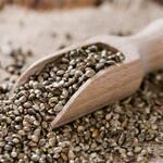Top 5 Health Benefits of Hemp Seeds! -Keep Fit Kingdom
