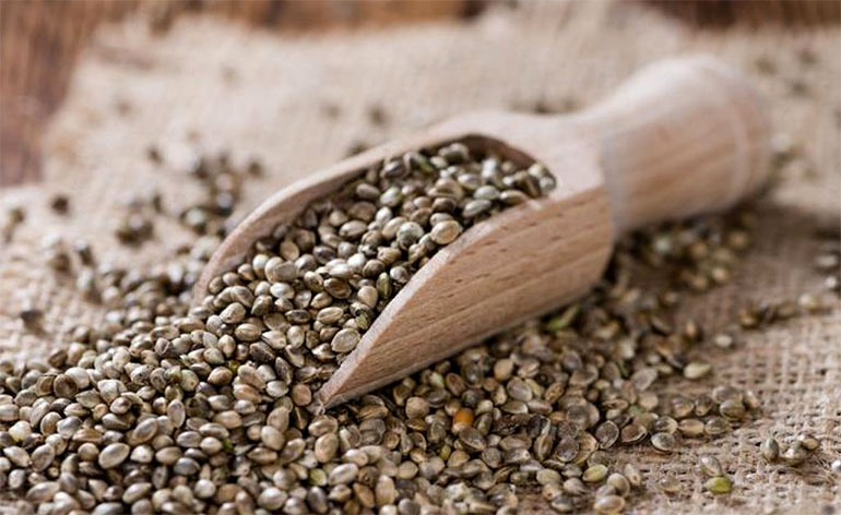 Top 5 Health Benefits of Hemp Seeds! -Keep Fit Kingdom