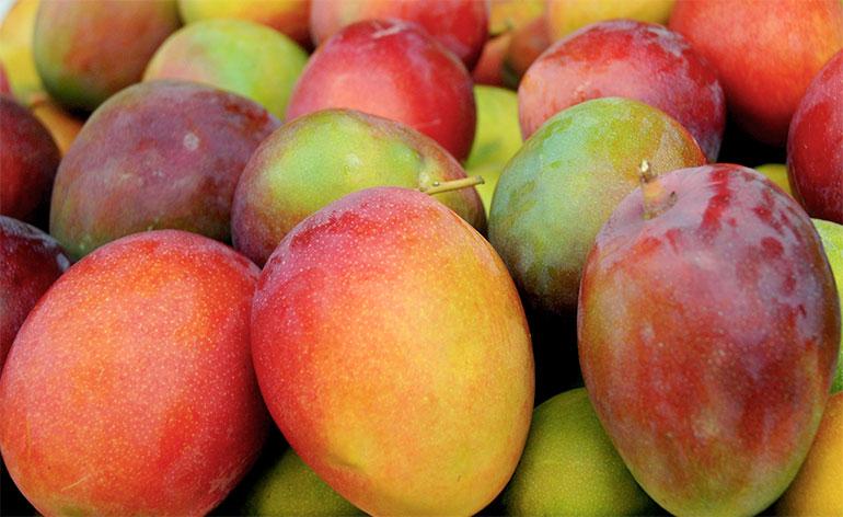 Top 5 Health Benefits of Mango! - Keep Fit Kingdom