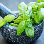Top 5 Health Benefits of Basil Keep Fit Kingdom 770x472