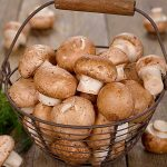 Top 5 Health Benefits of Mushrooms! - Keep Fit Kingdom
