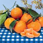 Top 5 Health Benefits of Satsumas! -Keep Fit Kingdom