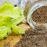 Top 5 Benefits of Celery Seeds! -Keep Fit Kingdom