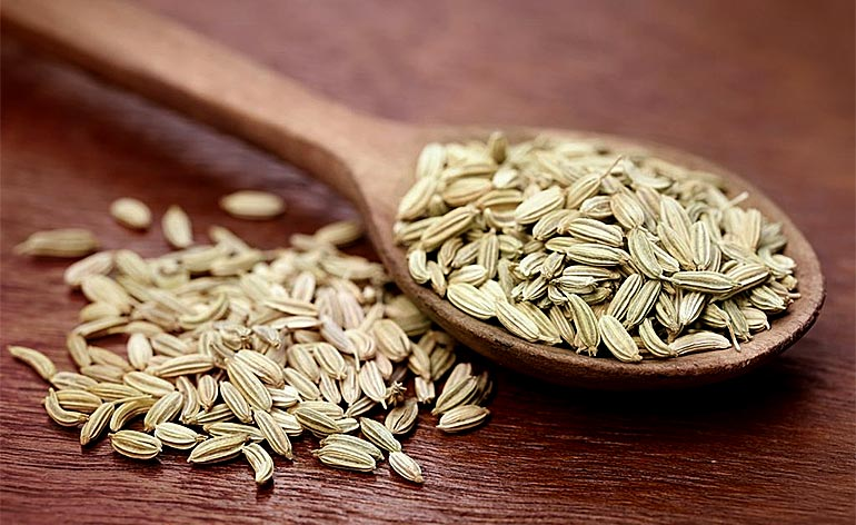 Top 5 Health Benefits of Fennel Seeds Keep Fit Kingdom 770x472
