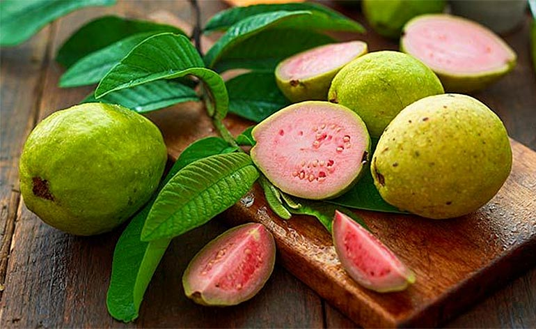 Top 5 Health Benefits of Guava! - Keep Fit Kingdom