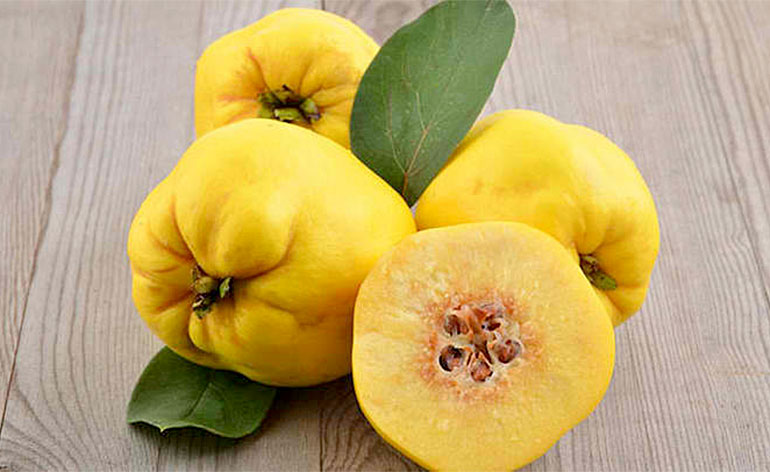 Top 5 Health Benefits of Quince! -Keep Fit Kingdom