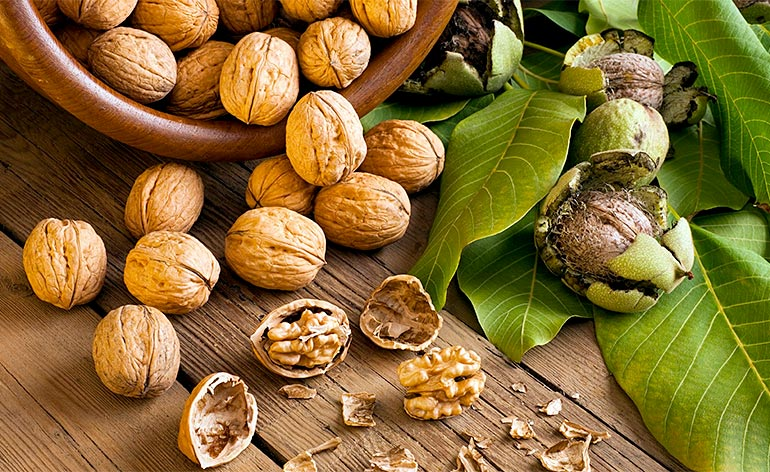 Top 5 Health Benefits of Walnuts! -Keep Fit Kingdom