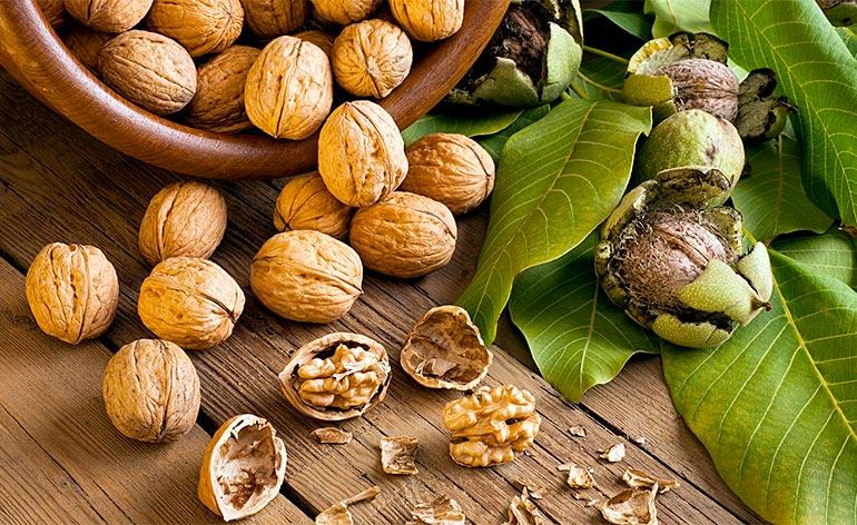 Top 5 Health Benefits of Walnuts! -Keep Fit Kingdom