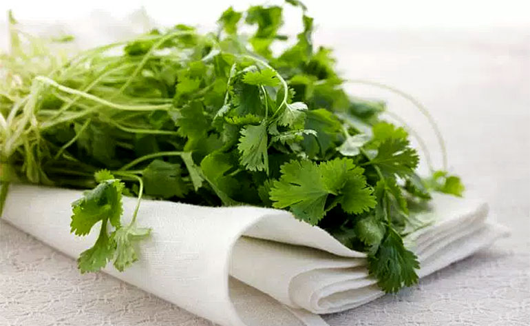 Top 5 Health Benefits of Coriander! -Keep Fit Kingdom