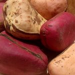 Top 5 Health Benefits of Kola Nut! -Keep Fit Kingdom