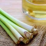Top 5 Health Benefits of Lemongrass! -Keep Fit Kingdom