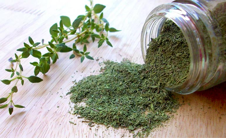 Top 5 Health Benefits of Thyme! -Keep Fit Kingdom