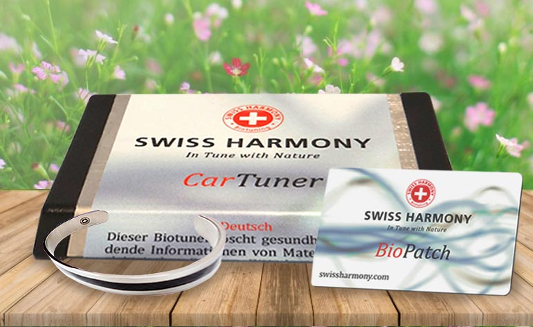 Swiss Harmony - Keep Fit Kingdom