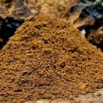 Top 5 Health Benefits of Chaga! - Keep Fit Kingdom