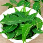 Top 5 Health Benefits of Neem! -Keep Fit Kingdom