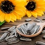 Top 5 Health Benefits of Sunflower Seeds! -Keep Fit Kingdom