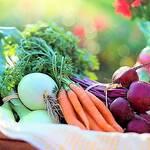 Top 5 Super Cheap High-Fibre Vegetables! - Keep Fit Kingdom