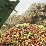 Top 5 Ways to Reduce Food Waste Keep Fit Kingdom 842x472