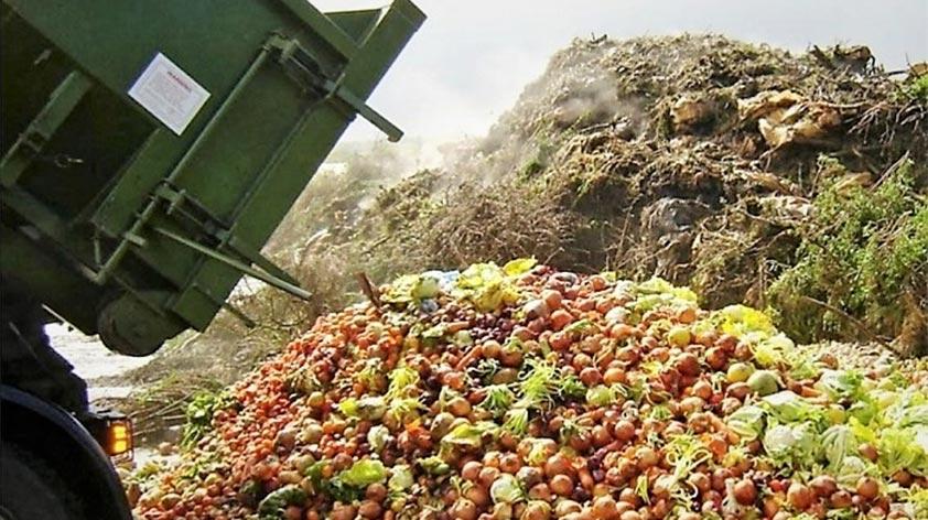 Top 5 Ways to Reduce Food Waste! - Keep Fit Kingdom