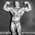 Arnold Schwarzenegger - Keep Fit Kingdom