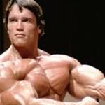Major muscle density