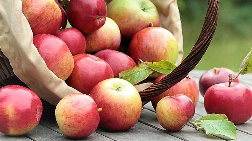 Top 5 Health Benefits of Apples! - Keep Fit Kingdom