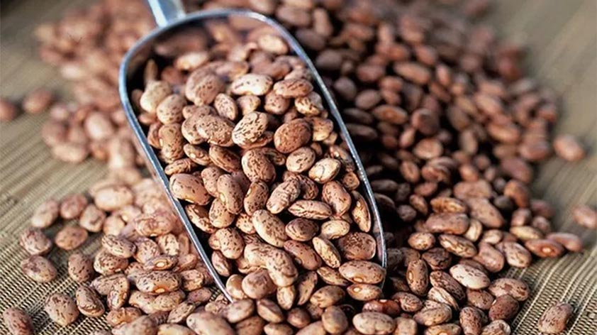Top 5 Health Benefits of Pinto Beans! - Keep Fit Kingdom