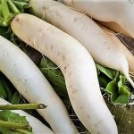Top 5 Health Benefits of Daikon Keep Fit Kingdom 842x472