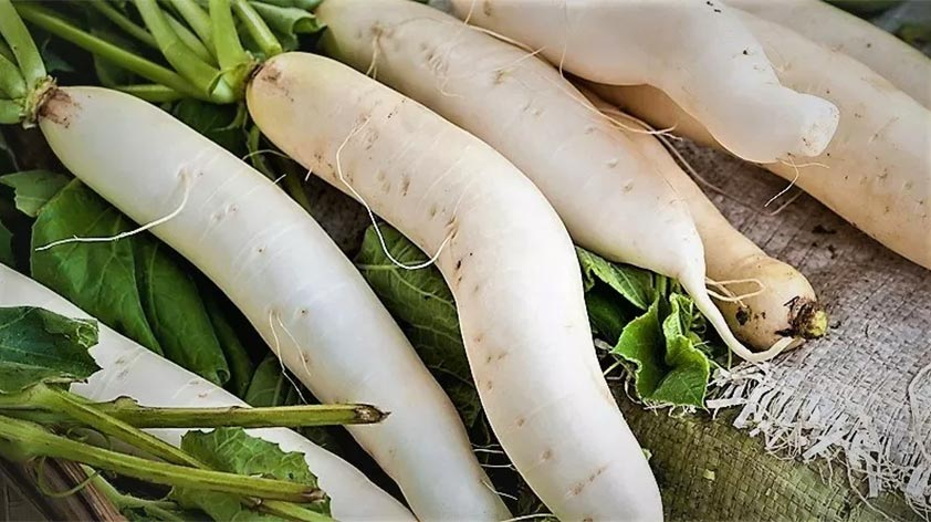 Top 5 Health Benefits of Daikon! - Keep Fit Kingdom