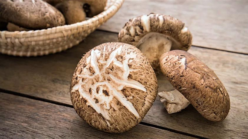Top 5 Health Benefits of Shiitake Mushrooms! - Keep Fit Kingdom