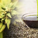 What's the fuss about CBD oil - Keep Fit Kingdom