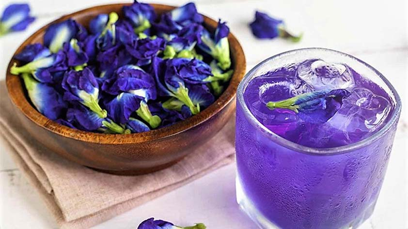 Top 5 Health Benefits of Blue Tea! - Keep Fit Kingdom