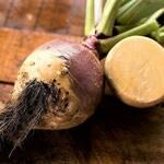 Top 5 Health Benefits of Rutabaga! -Keep Fit Kingdom