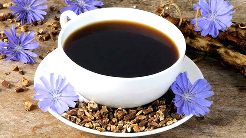 Top 5 Health Benefits of Chicory! -Keep Fit Kingdom