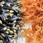 Top 5 Benefits of Sea Moss and Bladderwrack Keep Fit Kingdom 842x472