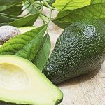 Top 5 Health Benefits of Avocado Leaves Keep Fit Kingdom 842x472