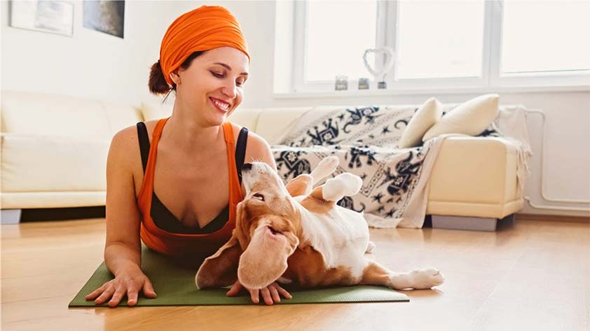 Doga Doing Yoga with Your Pet Keep Fit Kingdom842x472