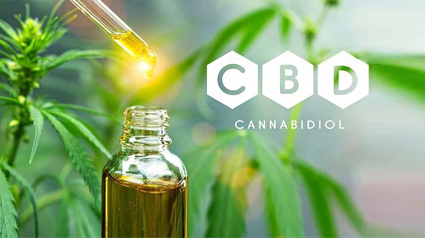 CBD Oil 6 Key Benefits You Should Know -Keep Fit Kingdom