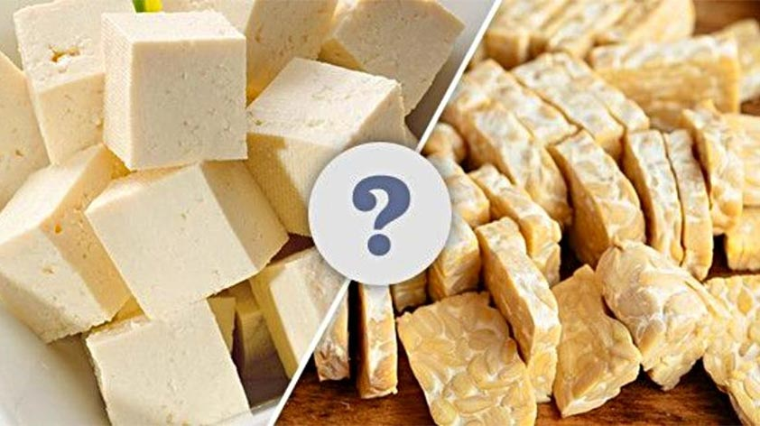 Tempeh vs Tofu Which is Better -Keep Fit Kingdom